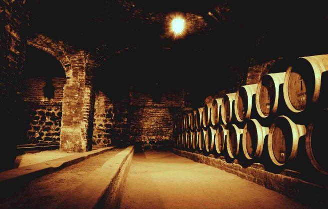 法国酒之渠酒窖